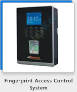 Biometric Time Attendance System India